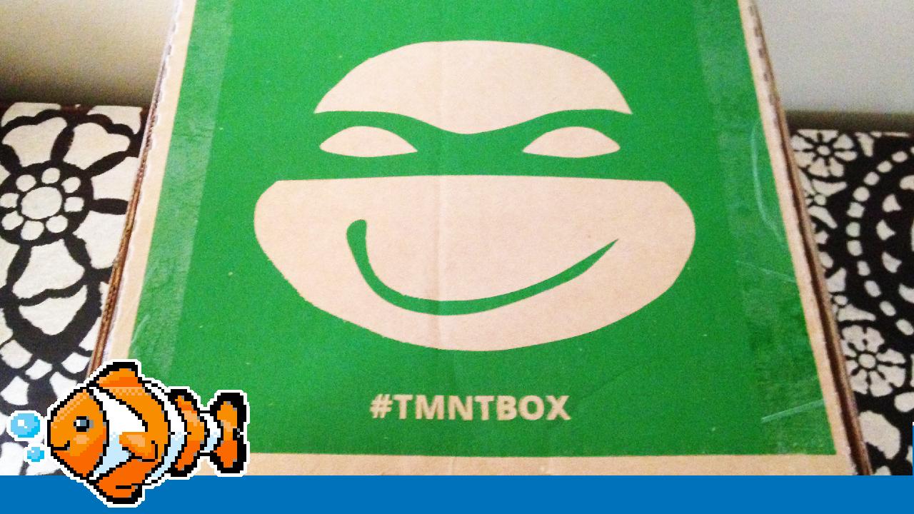 TMNT Box July 2015